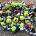 Dog Toys finished pile